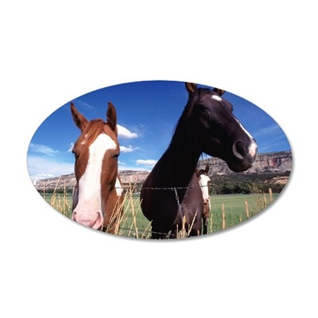 Three horses in farm 35x21 Oval Wall Decal