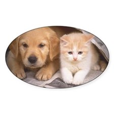 Golden Retriever and Cat Decal