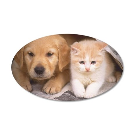 Golden Retriever and Cat 35x21 Oval Wall Decal