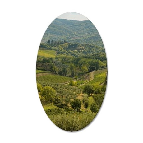Vinyards and farm fields in  35x21 Oval Wall Decal