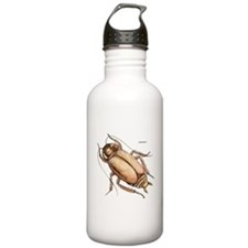 Cockroach Insect Water Bottle