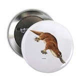 "Platypus Animal 2.25"" Button (10 pack)"