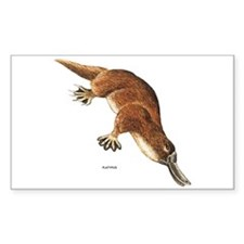 Platypus Animal Decal