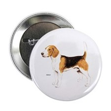 "Beagle Dog 2.25"" Button"