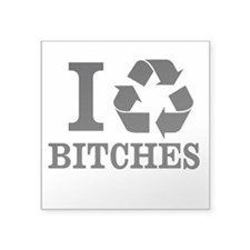 I Recycle BITCHES (Sticker)