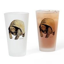 Galapagos Tortoise Drinking Glass