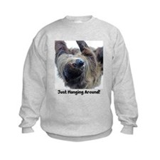 Just Hanging Around! Sloth Sweatshirt