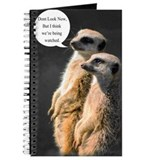 Meerkat Journal, Two Humorous Meerkats
