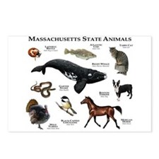 Massachusetts State Animals Postcards (Package of