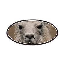 Llama 8716 Patches