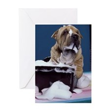 Chinese Shar-Pei Greeting Card