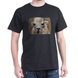 Llama 8716 T-Shirt