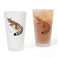 Ringtail Wild Cat Drinking Glass