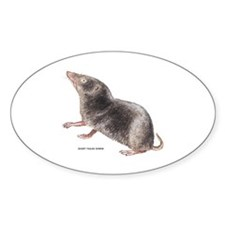 Short-Tailed Shrew Decal