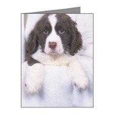 English Springer Spaniel Note Cards (Pk of 20)