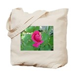Beautiful Rose Photo Tote Bag
