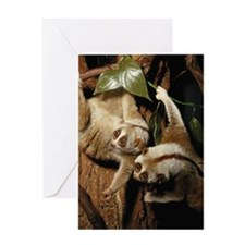 Slow loris (Nycticebus coucang) Greeting Card