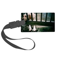 Dog leaning on cage Luggage Tag