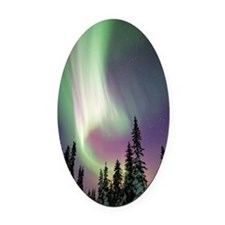 Aurora borealis and snow covered t Oval Car Magnet