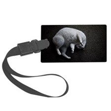 Curled white cat Luggage Tag