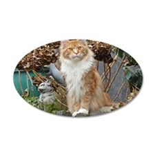 Maine Coon Cat Wall Decal