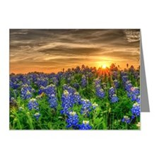 Texas bluebonnets in field Note Cards (Pk of 10)