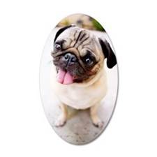 Cute pug Wall Decal