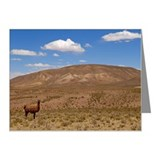 llama standing on landscape  Note Cards (Pk of 10)