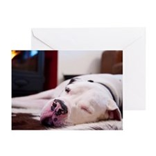 Great Dane Sleeping Greeting Cards (Pk of 20)
