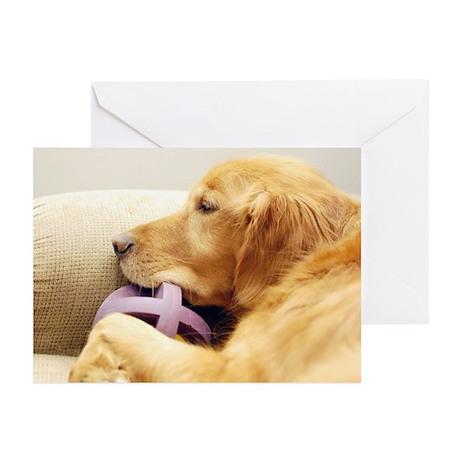 Golden Retriever resting Greeting Cards (Pk of 10)
