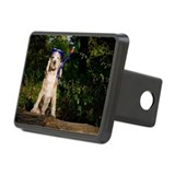 Dog with diving mask Hitch Cover