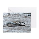 Nile crocodile attacking Greeting Cards (Pk of 10)