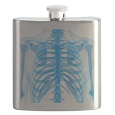 Upper body bones, artwork Flask