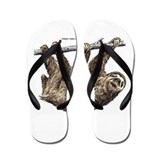 Three-Toed Sloth Flip Flops