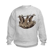 Three-Toed Sloth Sweatshirt