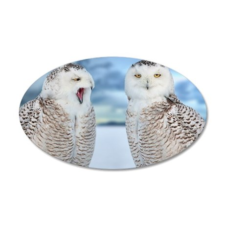 Snowy owls 35x21 Oval Wall Decal