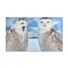 Snowy owls Rectangle Car Magnet