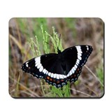 White Admiral Mousepad