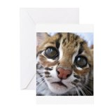 asian leopard cat Greeting Cards (Pk of 10)