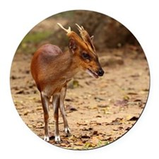 Barking deer Round Car Magnet