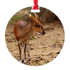 Barking deer Ornament