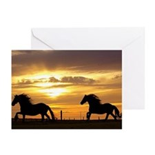 Sunset with horses Greeting Cards (Pk of 10)