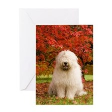 English Sheepdog acer tree Greeting Card
