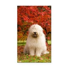 English Sheepdog acer tree Rectangle Car Magnet