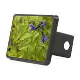 Costa Rican Sage Herb Rectangular Hitch Cover