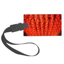 Red lanterns Luggage Tag