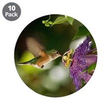"Hummingbird 3.5"" Button (10 pack)"