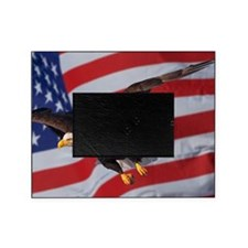 Eagle and flag Picture Frame