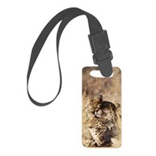 Cheetah (Acinonyx jubatus). Fema Luggage Tag
