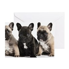 Pedigree French Bulldog  Greeting Cards (Pk of 10)